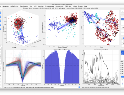 Cell Explorer: a graphical user interface and standardized pipeline for characterizing spiking features of single neurons